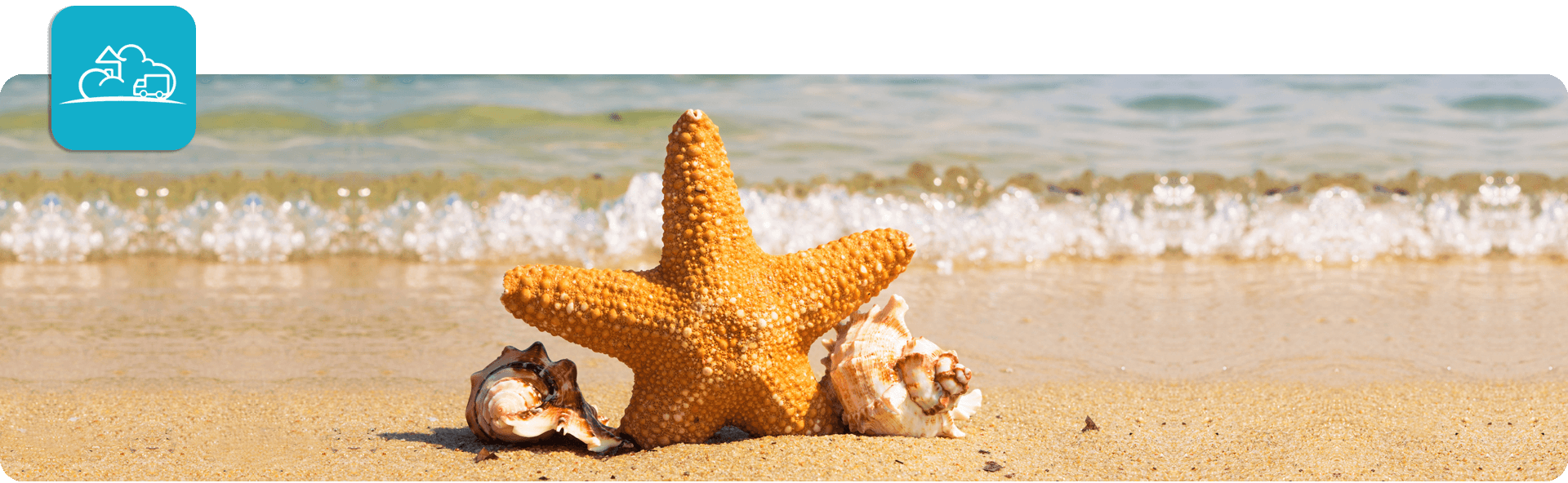 starfish and seashells on the beach with the tide behind